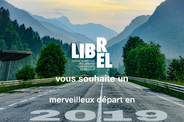 bandeau annee 2019 newsletter